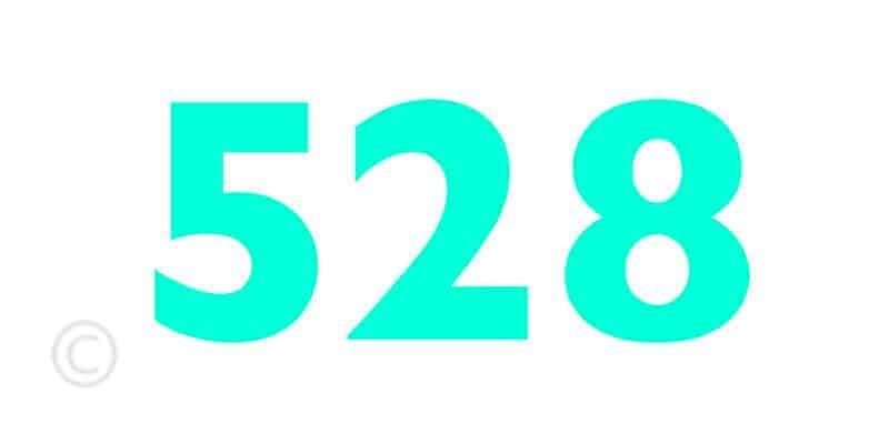528 Ibiza