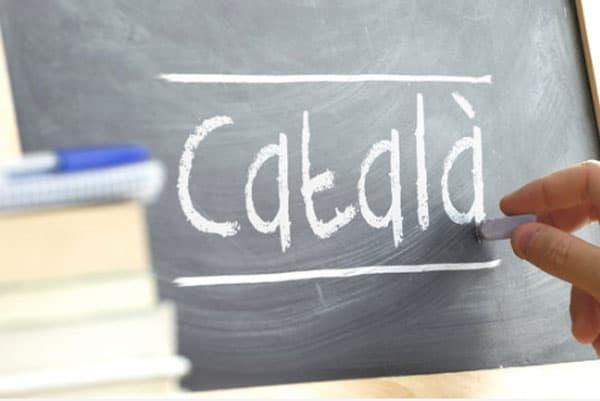 Leer Catalaans op Ibiza