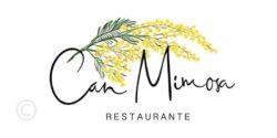 -Can Mimosa-Ibiza