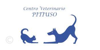 Centro veterinario Pitiuso