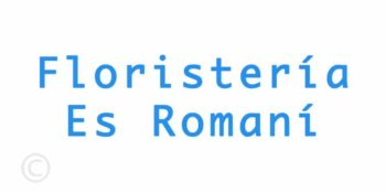 Floristería Es Romaní