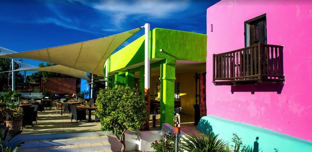 Pau Brasil Ibiza