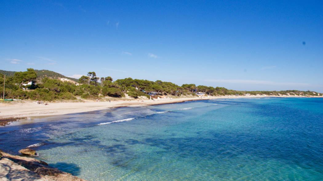 Ses salines beach Playa de las salinas Ibiza - 1