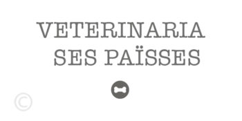 Vétérinaire Ses Païsses