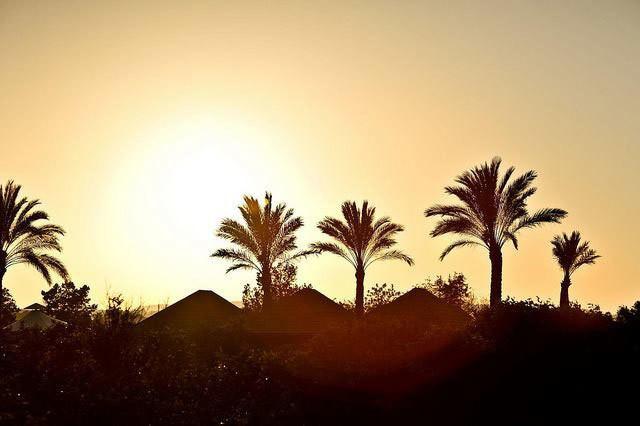 Un lujo a tu alcance: Ofertas de alojamiento en Atzaró Ibiza