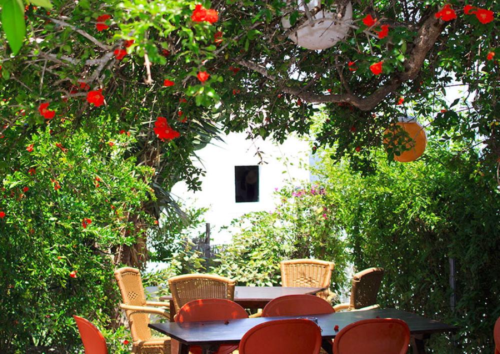 Il bar può berri ibiza