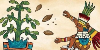 cacao-ceremonie-meditatie-liedjes-boutique-hostal-salinas-ibiza-2021-welcometoibiza