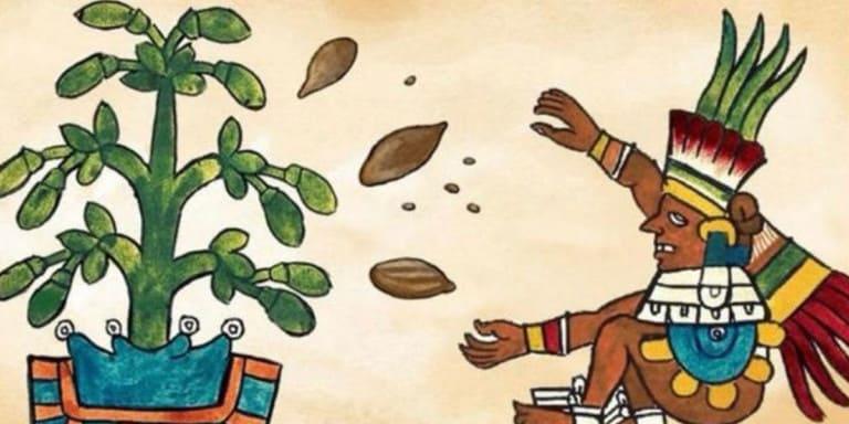 какао-церемония-медитация-песни-бутик-хостал-салинас-ибица-2021-welcometoibiza