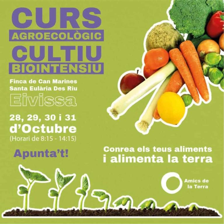 Курс по агроэкологическому и биоинтенсивному выращиванию с Amics de la Terra Ibiza