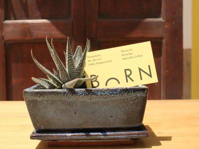 Uncategorized-BORN Ibiza-Ibiza
