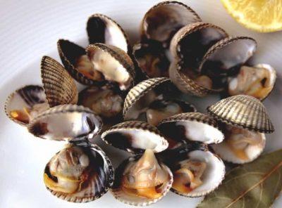 Restaurantes-Oyster Ibiza-Ibiza