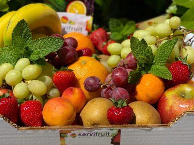 Servifruit Ibiza 2020 00