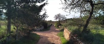 традиционный путь-ибица-добро пожаловать