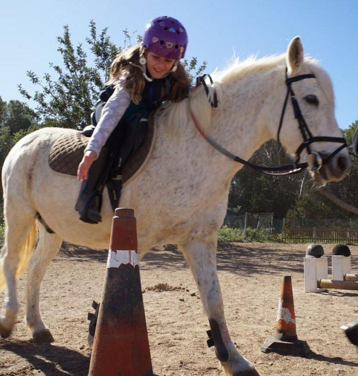 courses-initiation-horse-riding-ibiza-horses-welcometoibiza