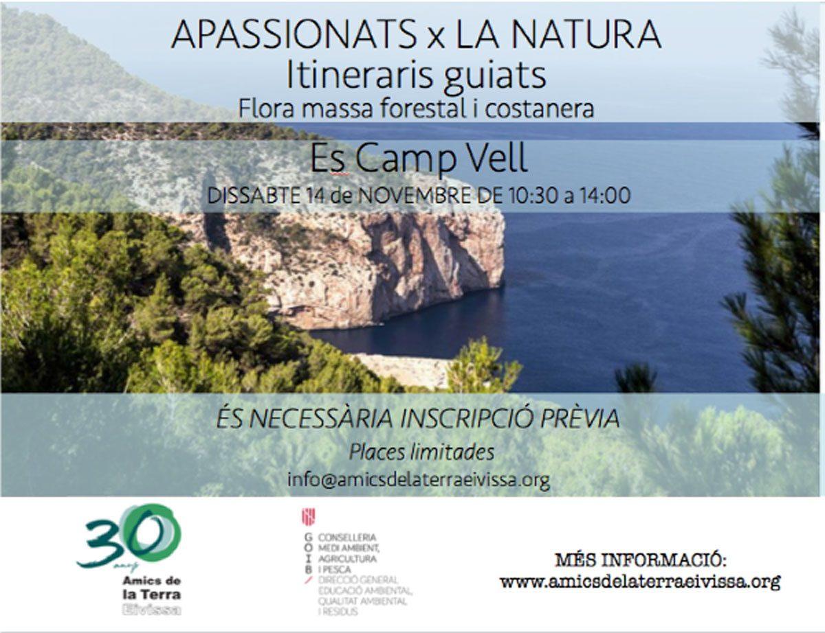excursion-amics-de-la-terra-es-camp-vell-ibiza-2020-welcometoibiza