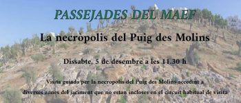 excursion-museo-arqueologico-de-ibiza-2020-welcometoibiza