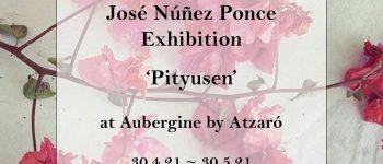 exposicio-fotografia-jose-nunez-ponce-restaurant-aubergine-Eivissa-2021-welcometoibiza