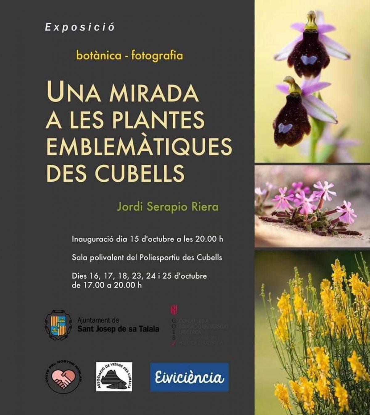выставка-растения-es-cubells-ibiza-2020-welcometoibiza