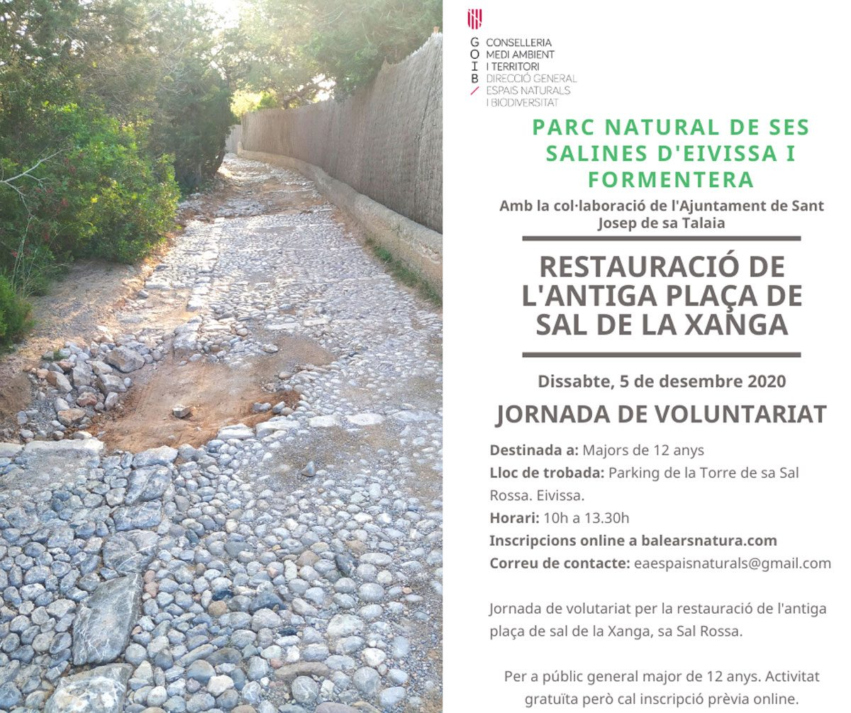 jornada-voluntariado-las-salinas-ibiza-2020-baleares-natura-welcometoibiza