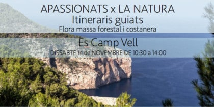 excursion-amics-de-la-terra-es-camp-vell-ibiza-2020-welcometoibiza