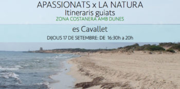 exkursion-es-cavallet-ibiza-amics-de-la-terra-2020-welcometoibiza