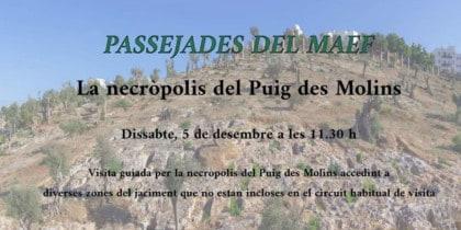 Visita guiada a la Necrópolis de Puig des Molins Actividades