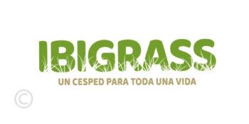 ibigrass-ibiza-artificial-grass-ibiza