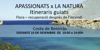 geführte Reiseroute-Costa-de-Benirras-Amics-de-la-Terra-Ibiza-2020-welcometoibiza