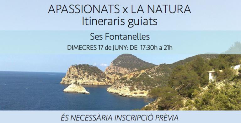 guided-itinerary-ses-fontanelles-amics-de-la-terra-ibiza-2020-welcometoibiza