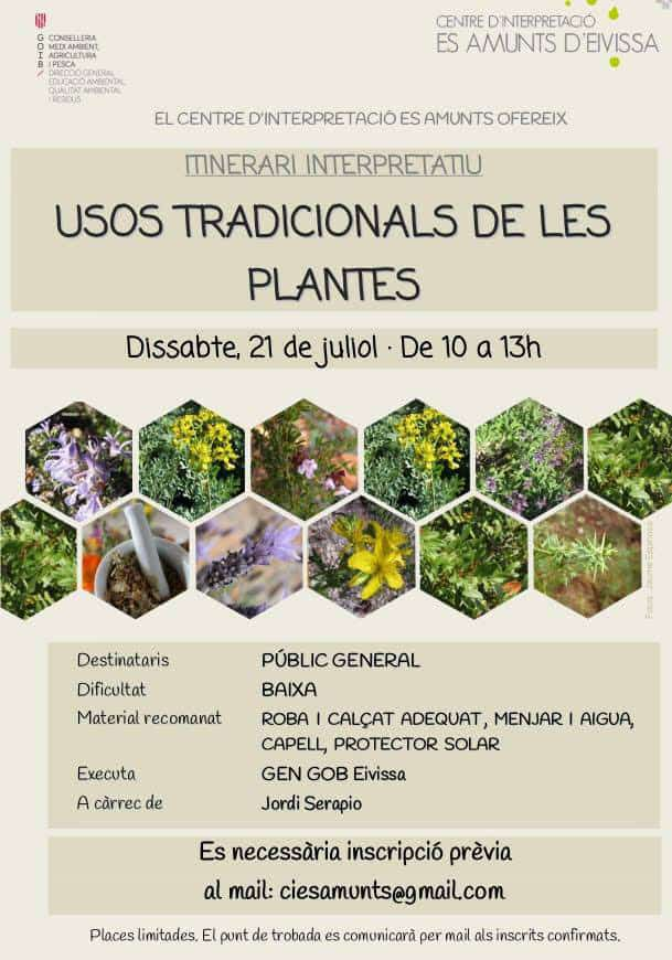 Itinerary to know the traditional uses of the plants of Es Amunts
