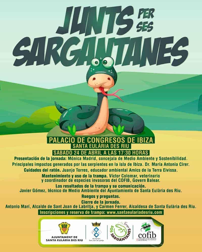 jornada-voluntariat-junts-per-ses-sargantanes-serps-Eivissa-welcometoibiza