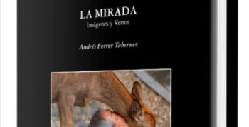 the-sguardo-book-andres-ferrer-Taberner-welcometoibiza