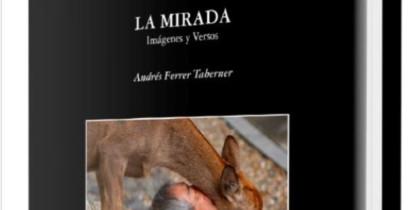 the-gaze-book-andres-ferrer-taberner-welcometoibiza