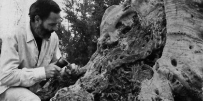 La Veritat de la Fusta, Antonio Hormigo Exhibition in es Caló de s'Oli News