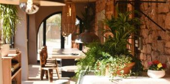 las-dalias-cafe-ibiza-welcometoibiza