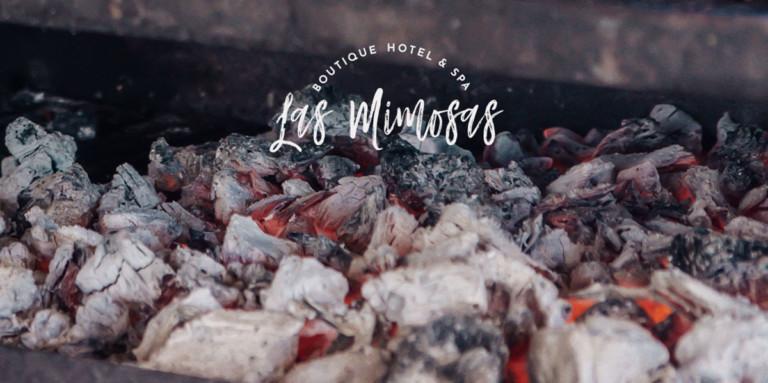 las-mimosas-ibiza-barbacoa-san-bartolome-2020-welcometoibiza