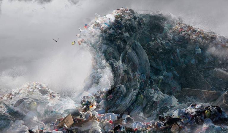 Limpieza de playa con Oceanic y Posidonia Activa Ibiza