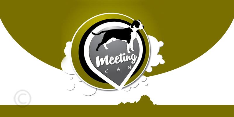Встреча может