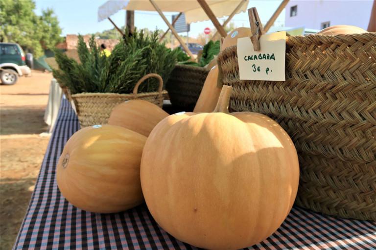mercat-de-sa-cooperativa-mercat-agricola-Eivissa-welcometoibiza