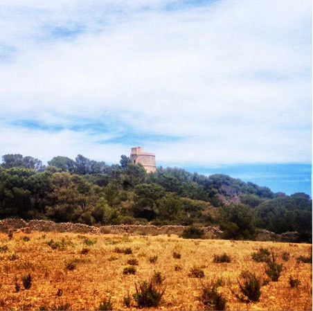 Excursiones de la semana en Walking Ibiza