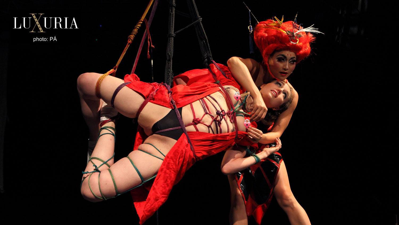 Shibari en BDSM Art & Fetish: Da rienda suelta a tus deseos más ocultos