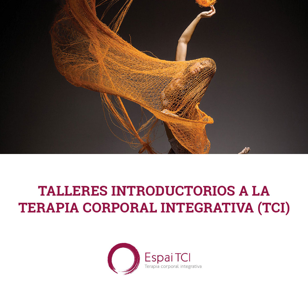 Free introductory workshops at Espai TCI Ibiza