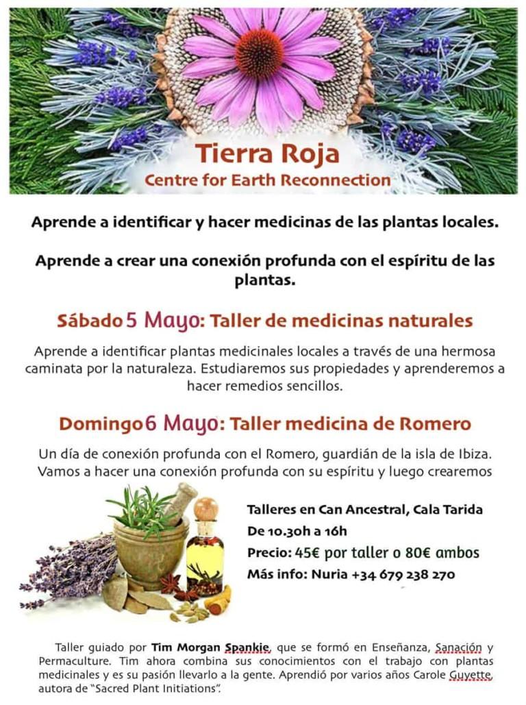 Dos interesantes talleres para aprender a identificar plantas medicinales y a usarlas