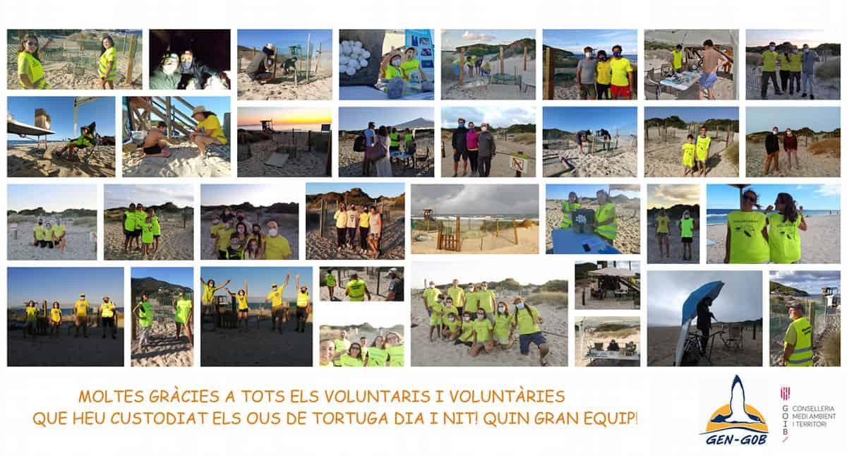 tortugas-es-cavallet-ibiza-2020-welcometoibiza