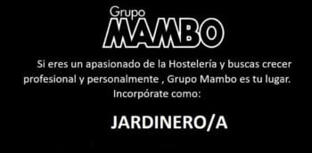 work-in-ibiza-2020-group-mambo-gardener-welcometoibiza