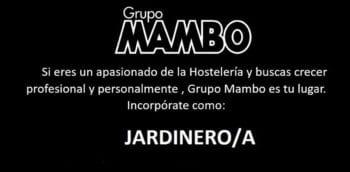 trabajo-en-ibiza-2020-grupo-mambo-jardinero-welcometoibiza