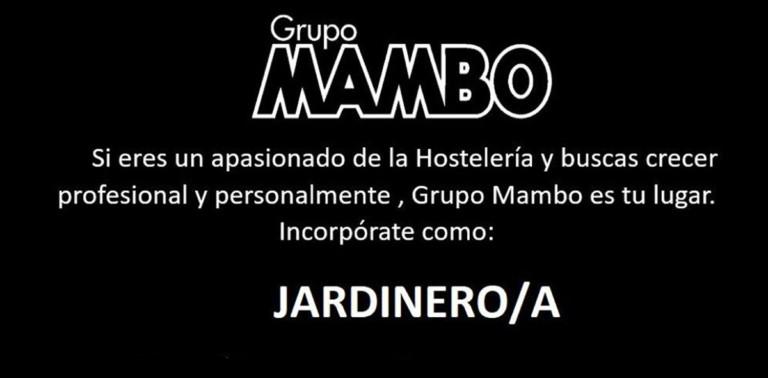 work-in-ibiza-2020-group-mambo-gardener-welcometoibiza