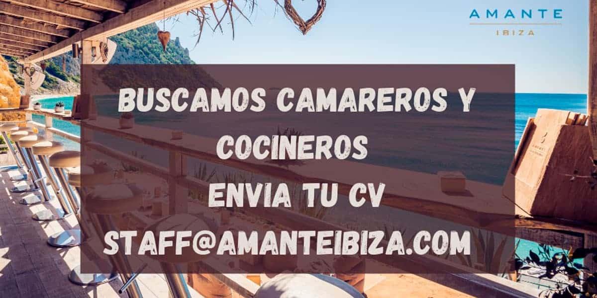 Trabajo en Ibiza 2021: Amante Ibiza busca personal Trabajo y formación