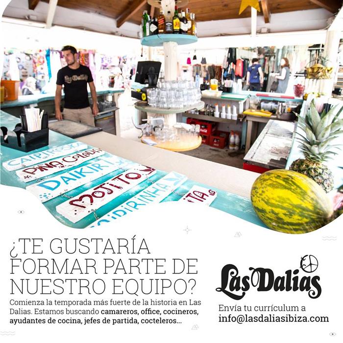Travailler à Ibiza 2018: Las Dalias Ibiza cherche personnelle