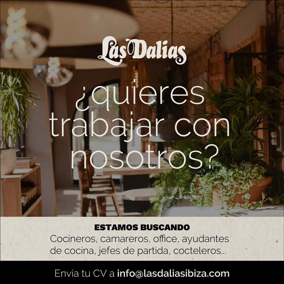 Travailler à Ibiza 2019: Las Dalias Ibiza cherche personnelle